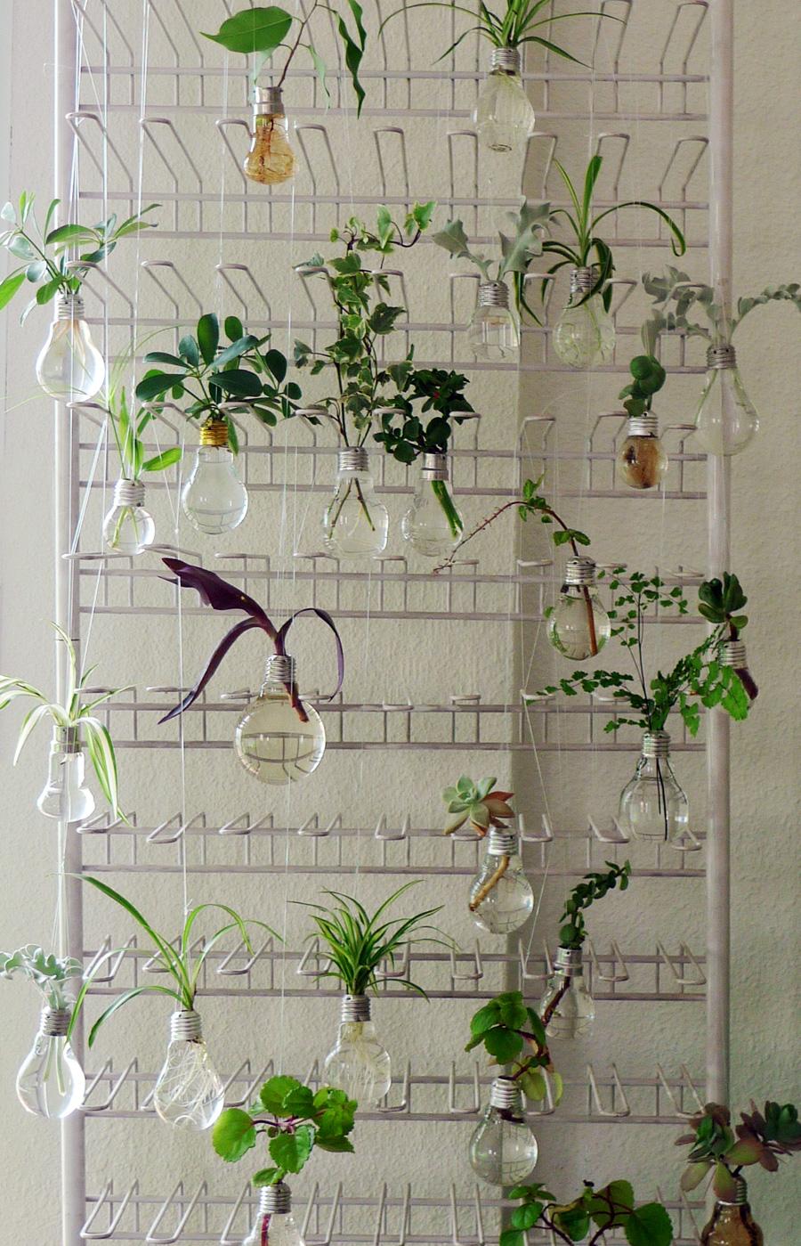 bombillas - jardines verticales