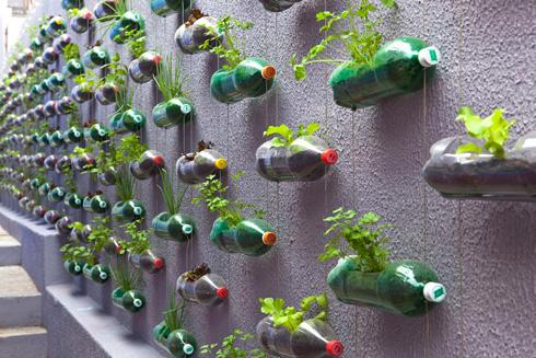botellas - jardines verticales