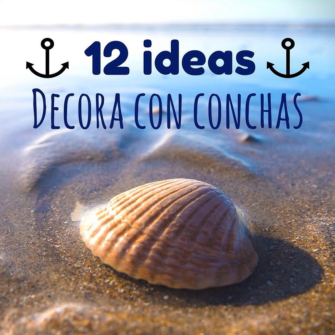 decoración con conchas de playa