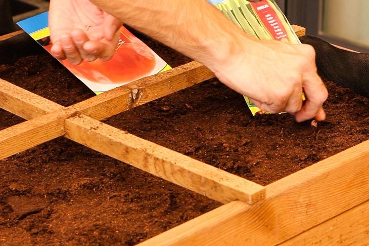 C mo cuidar tu jard n y terrazas en febrero handfie for Como cuidar el pasto de mi jardin