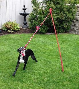 Juguetes caseros para perros 10 ideas que puedes hacer t handfie diy - Keeping outdoor dog happy winter ...