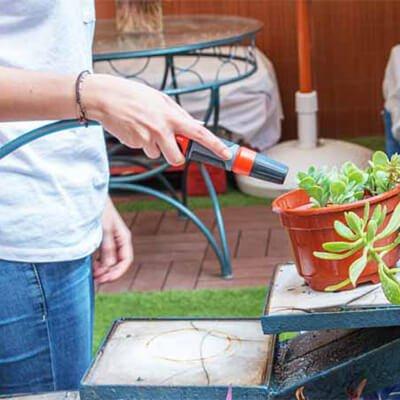 Tipos de riego para las plantas