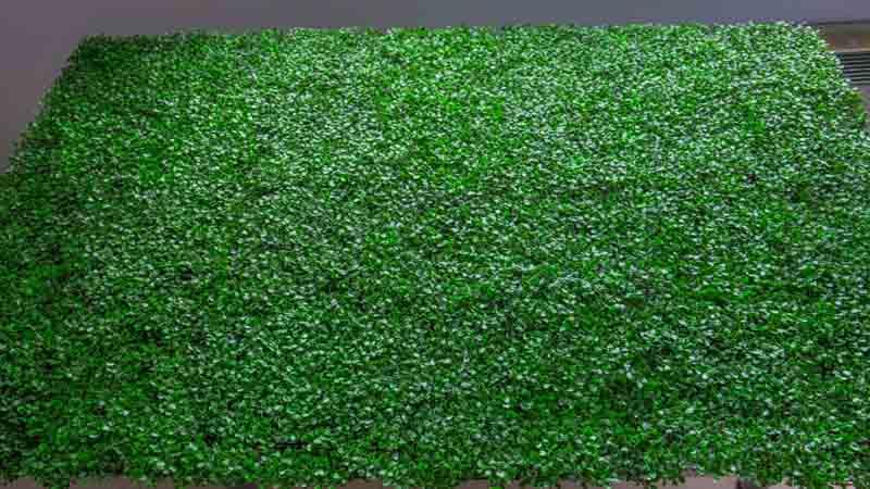 C mo transformar la pared con un jard n vertical for Jardin vertical materiales