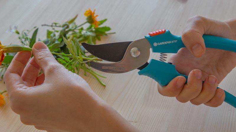 Tijeras cortando las flores