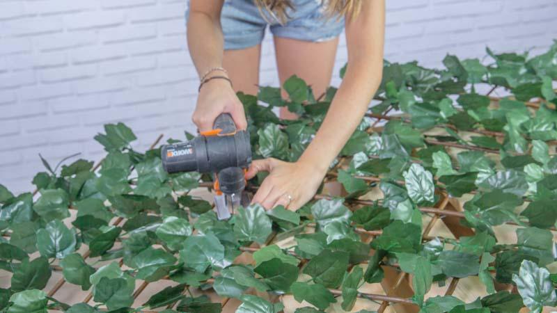 Corte de la celosía de hojas