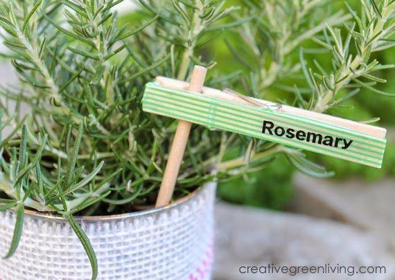 manualidades con pinzas: carteles para las plantas