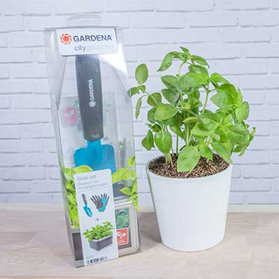 Kit para plantar en la ventana de Gardena