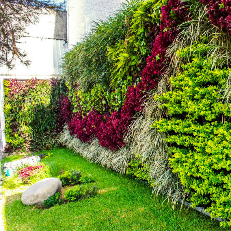 ideas_para_decorar_tu_jardín_crea_un_jardín_vertical_en_la_pared