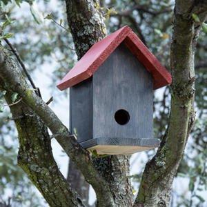 Cómo hacer una casita de madera para pájaros