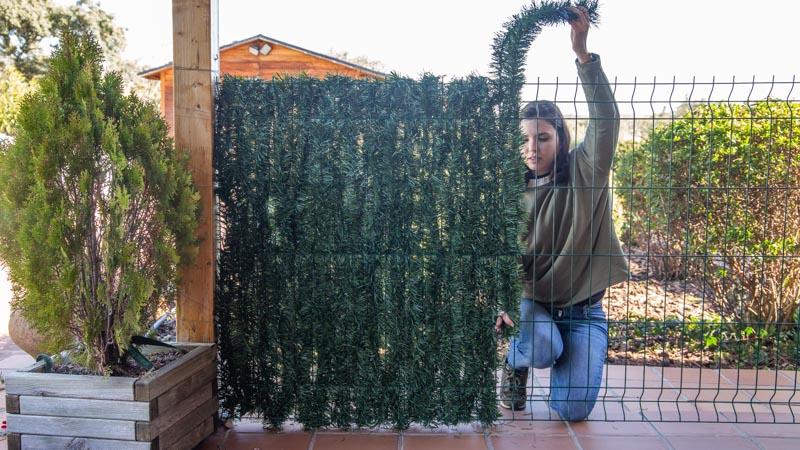 Colocando las ramas del seto