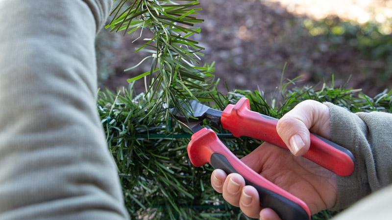 Cortando las ramas para el seto