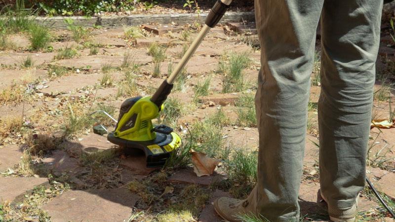 Repasar malas hierbas en jardín con cortabordes