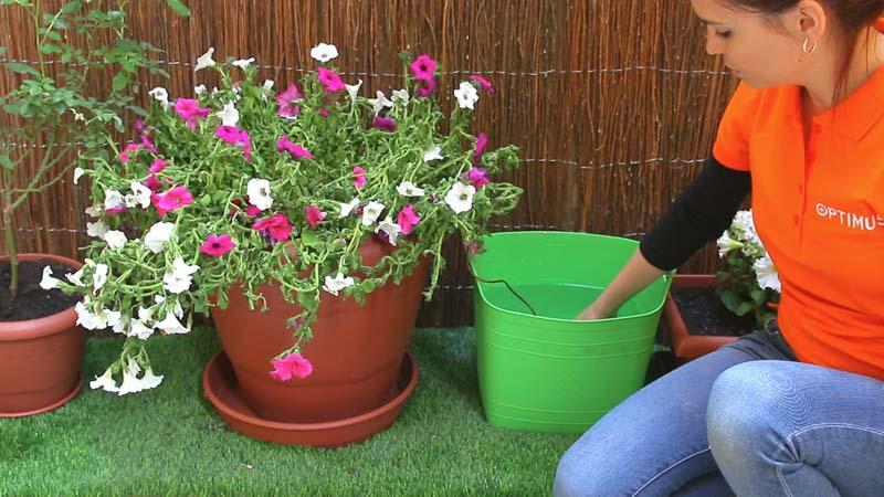 Conecta la manguera a un depósito de agua