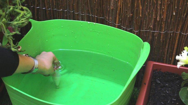 Sumerge en agua el cono cerámico para humedecerlo