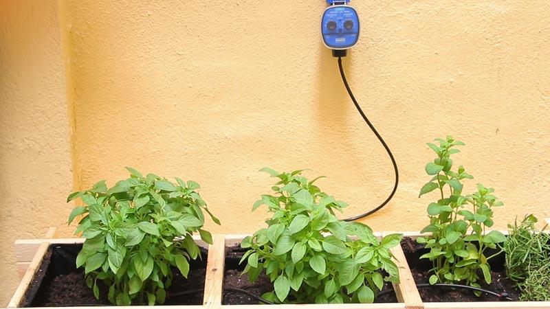 Sistema de riego por goteo con programador. Regar plantas en vacaciones.
