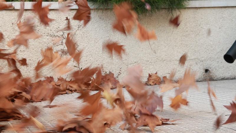 Cómo recoger las hojas en el jardín