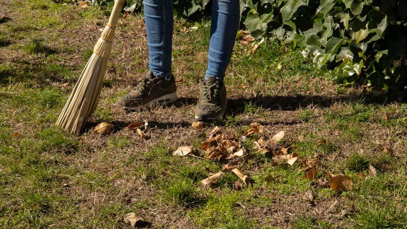 Barriendo hojas para echar al compostador