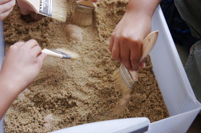 Excavando para descubrir dinosaurios