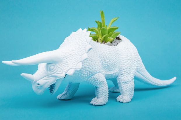 Dinosaurio con maceta fondo azul