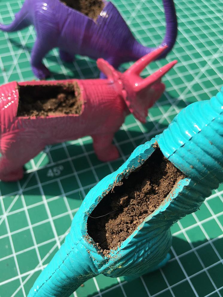 Tierra para poner maceta en dinosaurio