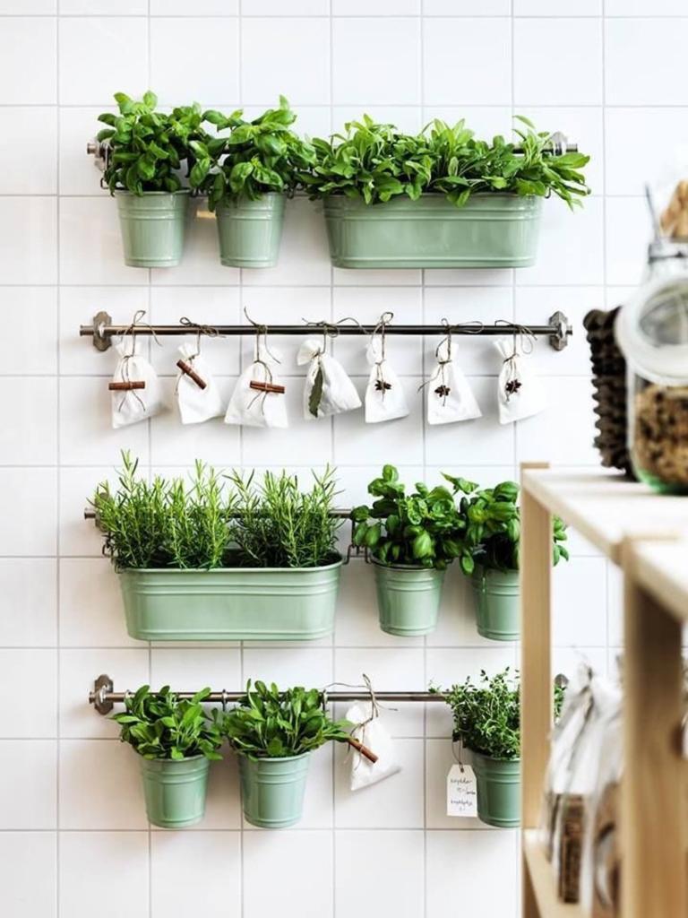 Plantas aromáticas como elemento decorativo