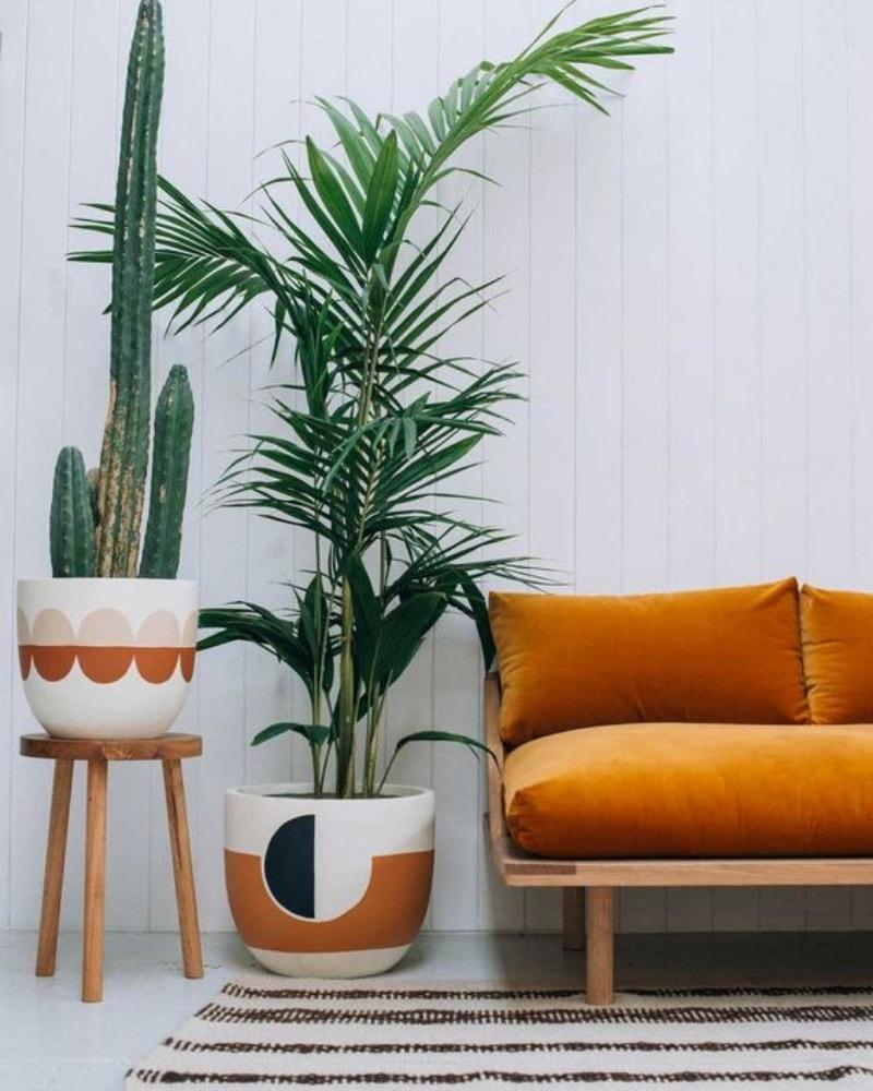 Decoración de salón con plantas verdes y colores mostaza