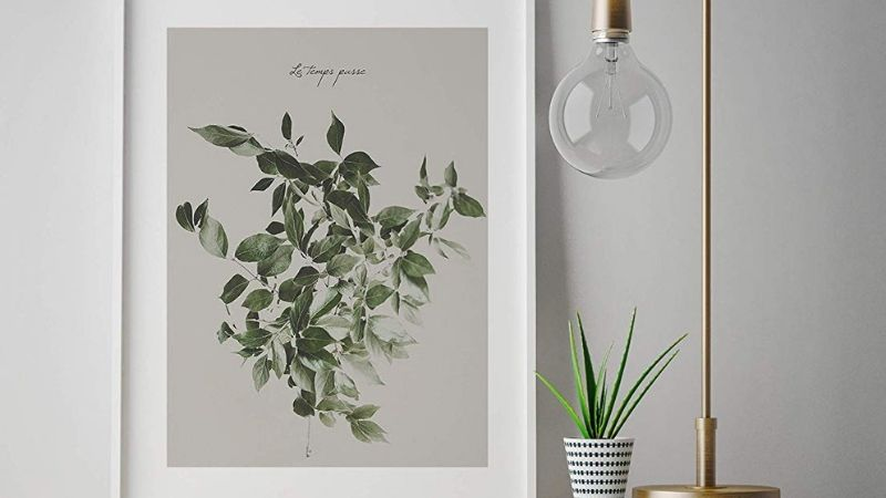Lámina para enmarcar con motivos vegetales