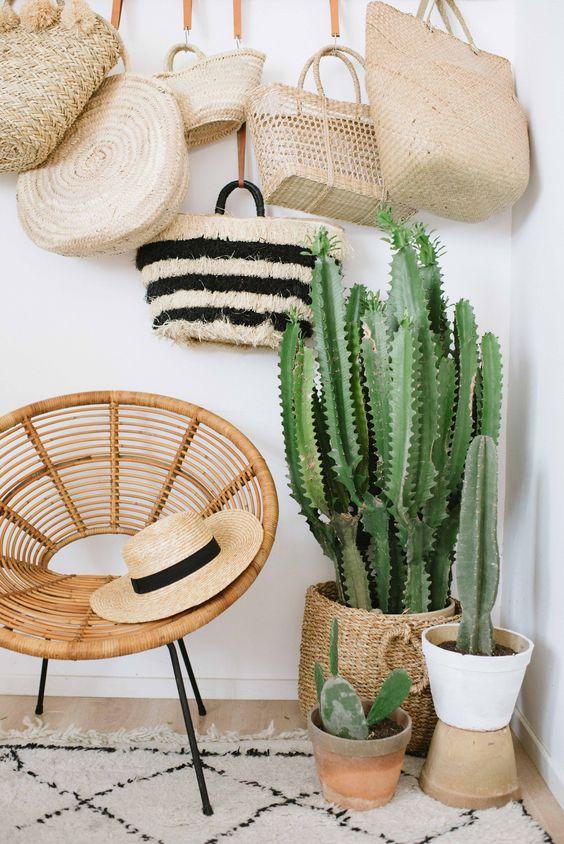 Cactus para decorar la entrada de casa