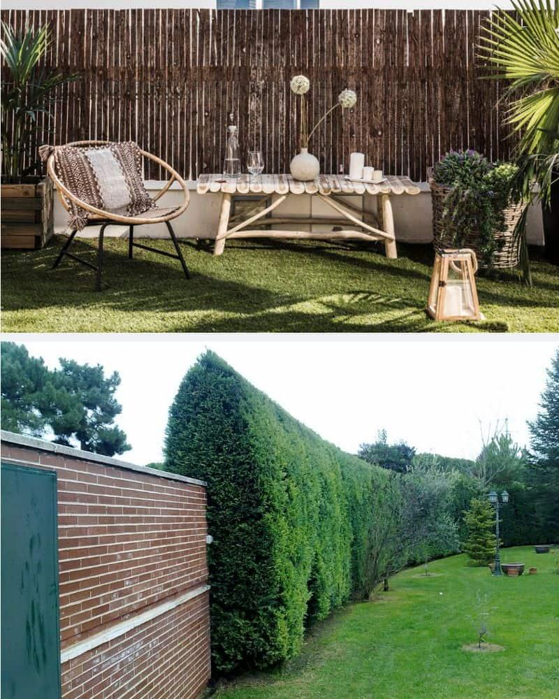 Sistemas de ocultación naturales para mantener la privacidad del jardín de forma decorativa.
