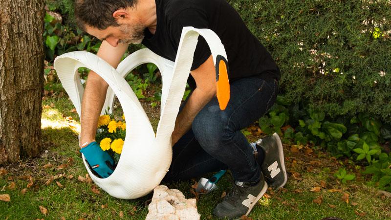 Trasplantar las flores en la maceta cisne
