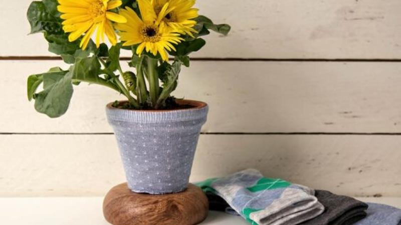 Cubre maceta con calcetín