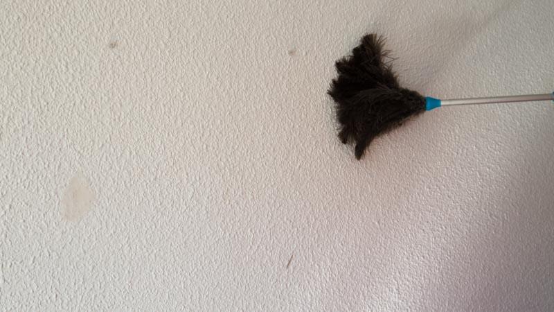 Limpieza de restos de polvo o suciedad con un plumero