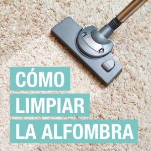 Cómo limpiar alfombras: Elimina manchas puntuales