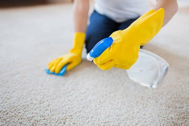 Una persona con guantes amarillos pulveriza con spray sobre una alfombra clara