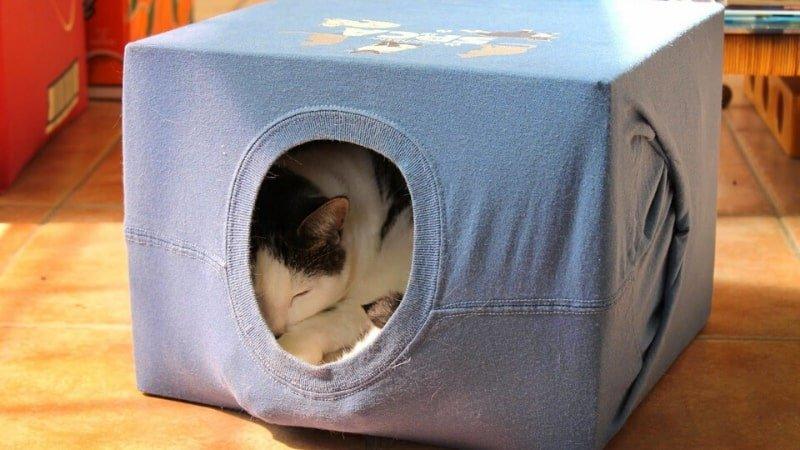 Casita para gatos