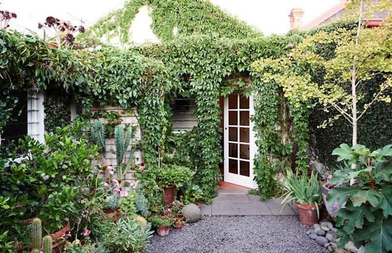 Una casita baja con un jardin verde completamente envuelta en plantas trepadoras