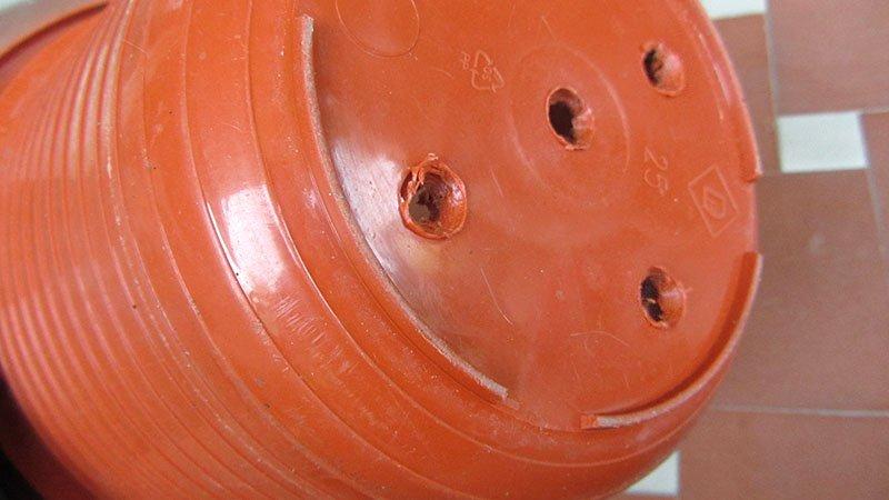 Parte inferior de una maceta de plástico con agujeros para el drenaje