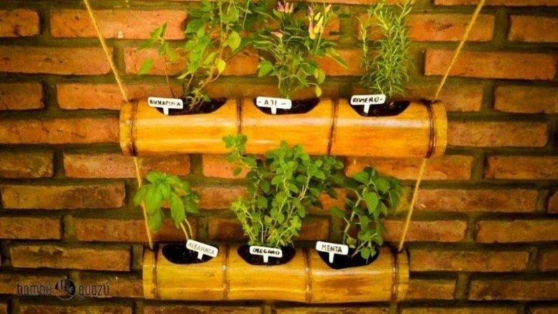 Macetas con cañas de bambú para plantas pequeñas