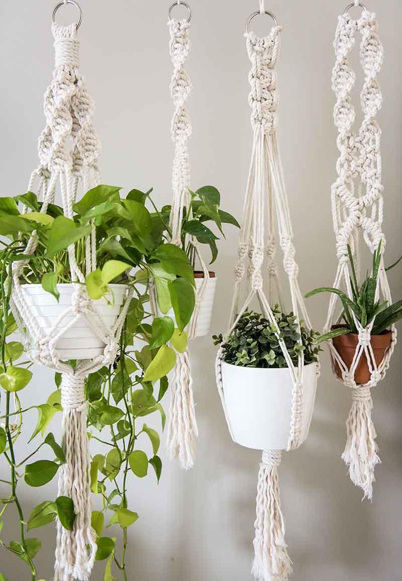 Cuatro plantas en maceteros colgantes de macramé