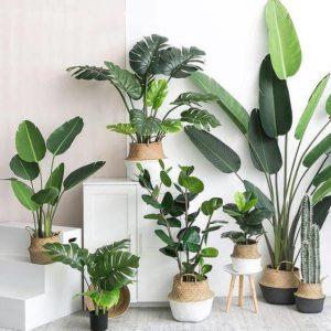 Decorar con plantas artificiales