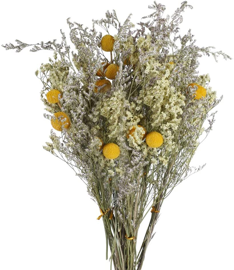 Ramillete de flores preservadas silvestres
