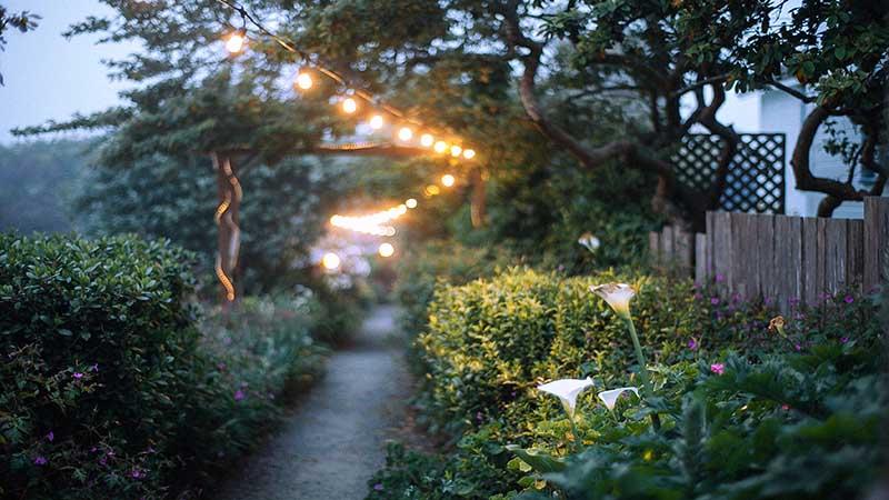 Guirnaldas colgadas de árboles y arcos para iluminar el jardín