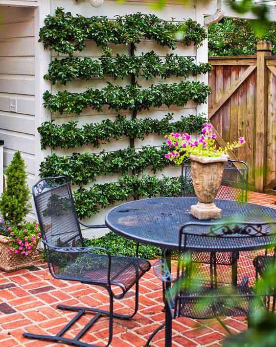 Macetas con plantas colgadas en la pared para decorar la terraza
